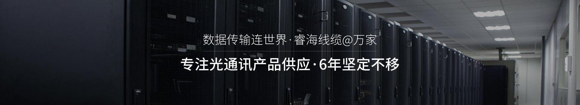 睿海光电-专注光通讯产品供应 14年坚定不移
